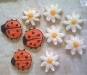 Lady Bugs and Daisys